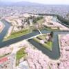 五稜郭公園(函館)の桜が満開!美しいと話題に。